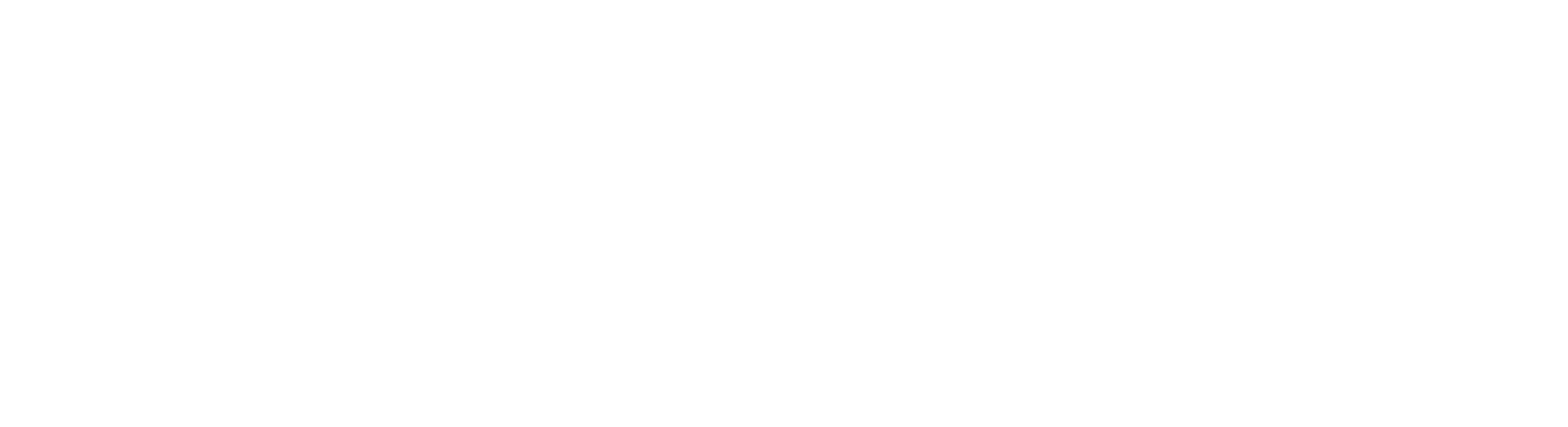 logo kaseware white
